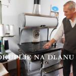 sporet_svetislav_1.jpg
