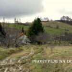 СРБИЈА ШУМЕ ПРАВИ ПУТ БУЧИНСКА РЕКА