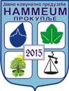 ЈКП Hammeum